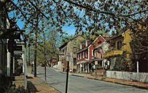 Mechanic Street Scene, New Hope, Bucks County, Pennsylvania 1973 Postcard