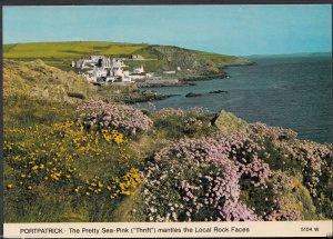 Scotland Postcard - Portpatrick - The Pretty Sea-Pink Mantles The Rock  RR891