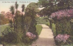 North Carolina Pinehurst At The New Holly Inn Albertype