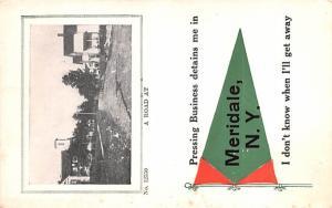 Road Scene Meridale, New York Postcard
