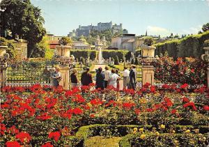 Salzburg Blumenpracht im Mirabellgarten, Spledor of Flowers Garden