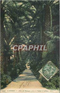 Postcard Old Cannes Allee taking Palmiers Hotel Albion