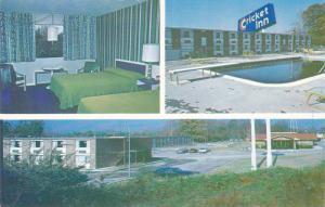 Swimming Pool,  Cricket Inn,  Dunn,  North Carolina,   40-60s