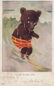 Bear ; 1908 ; A Dip in the Surf