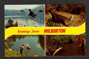 OK Greetings from WILBURTON OKLAHOMA Postcard Deer Duck