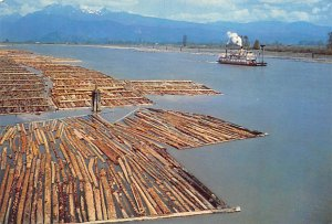Logging Post Card Paddle Steamer and Log Booms Pitt Meadows, British Columbia...