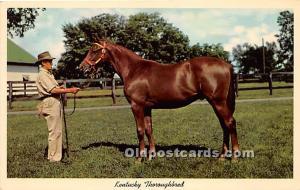 Kentucky Thoroughbred, Yearling Ready for sale Lexington, Kentucky, KY, USA U...