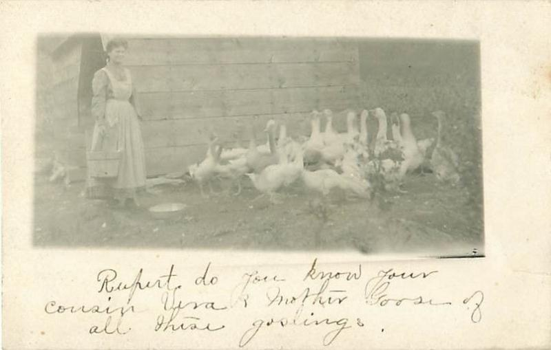 Woman in Long Apron and Geese Early 1900s  Real Photo Postcard  to Rupert Lewis