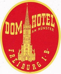 Germany Freiburg Dom Hotel am Muenster Vintage Luggage Label sk3159