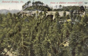 NATURAL BRIDGE, Kentucky, PU-1909; View From A Distant Mountain Cliff