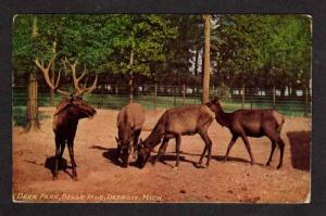 MI Deer Park Belle Isle DETROIT MICHIGAN Postcard PC