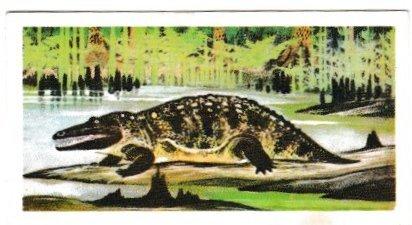 Trade Cards Brooke Bond Tea Prehistoric Animals No03