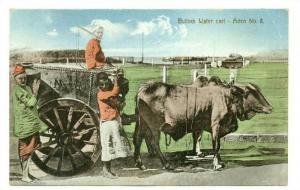 Aden , Yemen , 00-10s ; Bullock Water cart