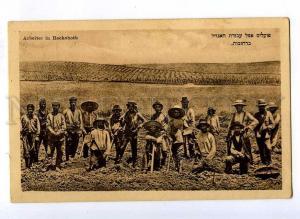191396 NAMIBIA Jewish Workers in Rechoboth Vintage postcard