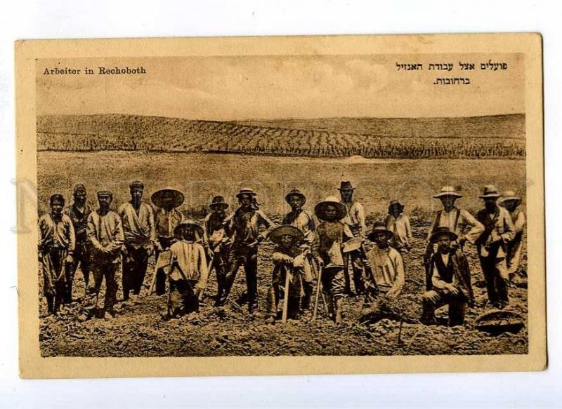 191396 NAMIBIA Jewish Workers in Rechoboth Vintage postcard