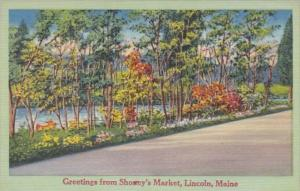 Maine Lincoln Greetings From Shoney's Point