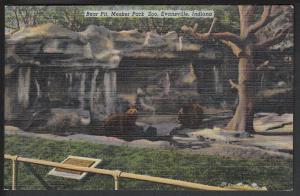 Bear Pit Mesker Park Zoo Evansville IN Post Card 5106