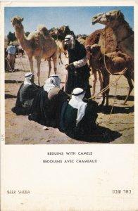 Israel Beer Sheba Beduins With Camels sk4142