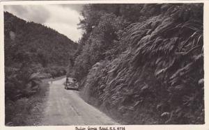 RP, Buller Gorge Road, New Zealand, 1920-1940s