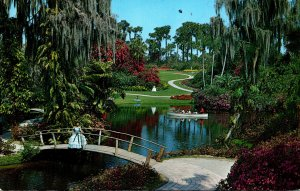 Florida Cypres Gardens Showing Blooming Flowers and Trees 1977