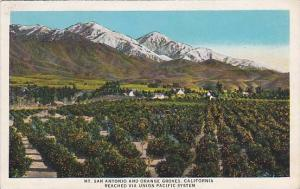 Scenic view, Mt. San Antonio and Orange Groves, California,  00-10s