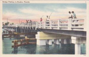 Florida Bridge Fishing In Ruskin
