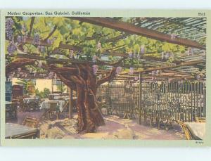 Linen RESTAURANT SCENE San Gabriel California CA B9925