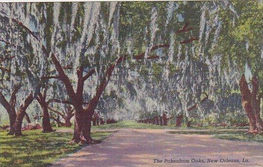 The Pakenhams Oaks New Orleans Louisiana