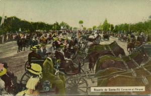argentina, ROSARIO DE SANTA FÉ, Corso en el Parque, Horse Carts (1910s)
