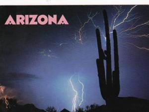 Arizona Lightning Show Behind Giant Saguaro Cactus