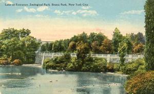 NY - Bronx Park. Lake at Entrance, Zoological Gardens
