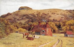 Chantonbury Ring, Worthing, cattle, village scenery, A.R. Quinton signed