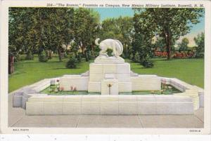 New Mexico Roswell The Bronco Fountain On Campus New Mexico Military Institut...