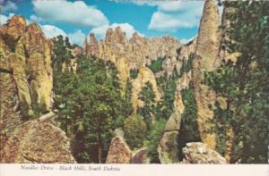 South Dakota The Black Hills Needles Drive