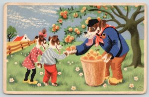 Artist~Dressed Dogs~Picking Fruit~How Do You Like Them Apples, Kids~c1915