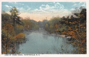 View at Cross Creek, Fayetteville, North Carolina, Early Postcard, Unused
