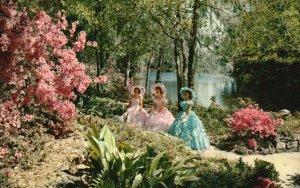 Mobile, AL, Bellingrath Gardens, Mirror Lake, Chrome Vintage Postcard g9319