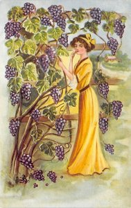 Woman standing by a vineyard of purple grapes Artist C. Ryan Glamour Woman Un...