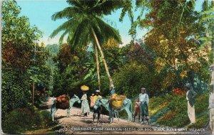 Greetings from Jamaica Scene on Bog Walk near Kent Village Unused Postcard E71