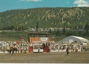 WILLIAMS LAKE , B.C. , Canada , 50-60s ; Rodeo