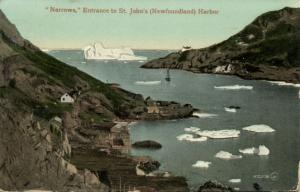 canada, St. JOHN'S, Newfoundland, Narrows, Harbor Entrance (1910) Postcard