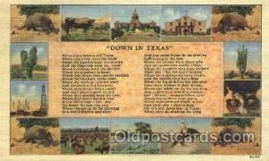Down in Texas Western Cowboy, Cowgirl Postcard Postcards  Down in Texas