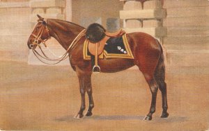 The King's Charger. Browie Tuck Oilette Royal Mews Buckingham Palace
