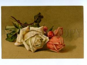 141007 ROSES Flowers by C. KLEIN vintage Russian PC