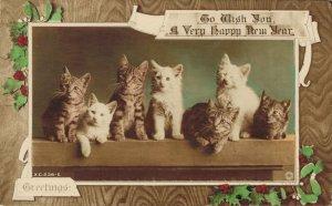 Happy New Year Cute Kittens 03.37