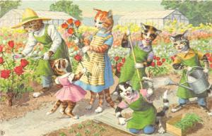 F60/ Alfred Mainzer Dressed Cats Postcard c1940s Flower Garden 1