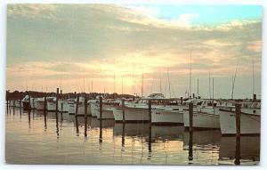 Postcard DE Rehoboth Beach Sunset Indian River Yacht Basin D10