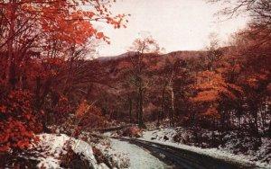 Autumn in Smuggler's Notch, Vermont, VT, 1957 Chrome Vintage Postcard g9279