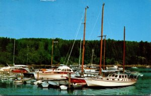 Maine Acadia National Park Mt Desert Island Northeast Harbor Marina 1972