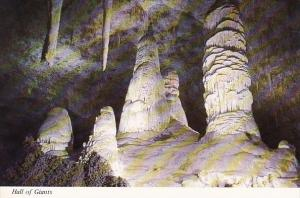 Hall Of Giants Carlsbad Caverns National Park New Mexico